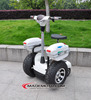 1000w 2015 new stand up electric balance scooter for sale