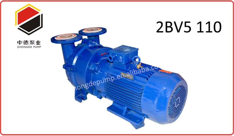liquid ring vacuum pump -1.jpg