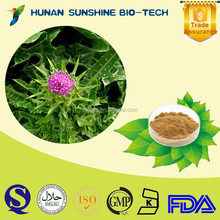 Reliable supplier for liver pain medicine silybum marianum extract 80% Silymarin