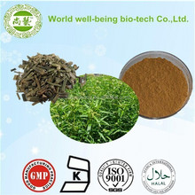 High Quality Kariyt Extract/Common Andrographis Herb Extract Andrographolide 10%-98%