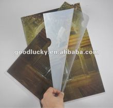 Promotion gift pp file folder for the office people in 2012