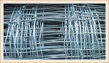hot dipped galvanised high strength knotted joint fence/ Dingo wire/dog wire fence