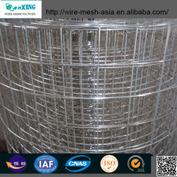 Factory professional hot sale high quality and fairest price hot dipped galvanized welded wire mesh
