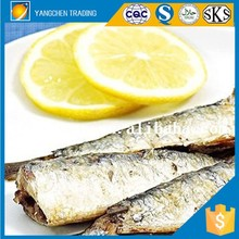 HALAL food fresh fish on line canned sardine oil with price