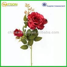 Decorative new design hot sale rose varieties