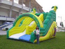 2015 new Chinese factory price customized style and size inflatable bouncer slide, inflatable water slide