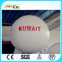 CILE 2015 hot selling customized can float inflatable model (advertising, sales promotion, simulator, events)