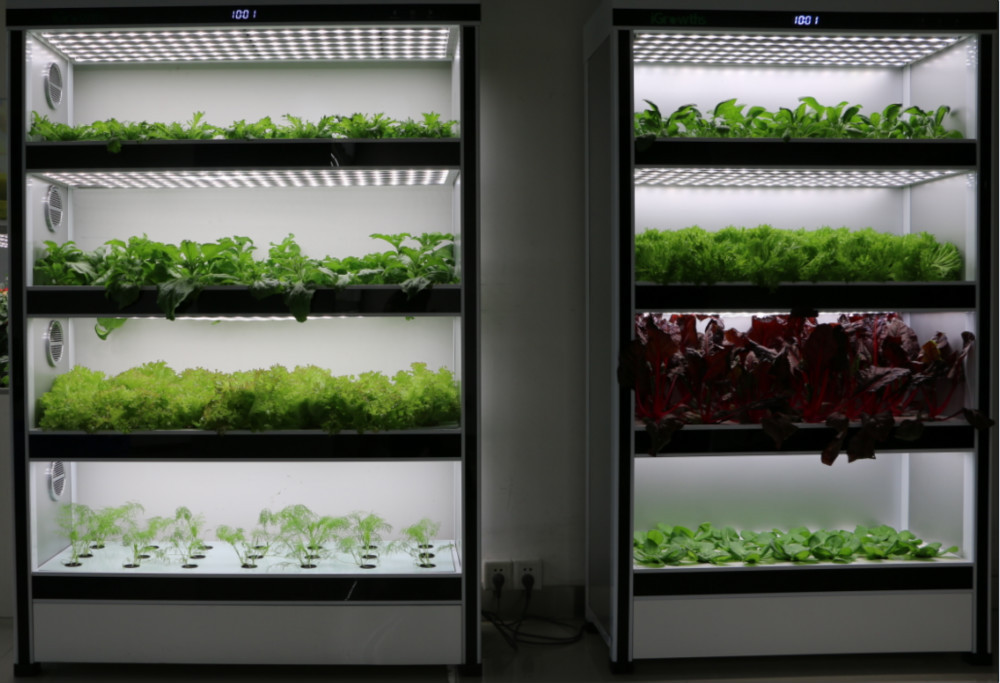 hydroponics equipment buy hydroponics equipment hydroponics equipment hydroponics equipment. Black Bedroom Furniture Sets. Home Design Ideas