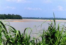 Perak River Sand