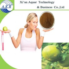 New product Srivastava fruit extract 5% Raspberry ketone for losing weight