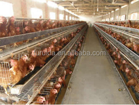 3 tier or4 layer chicken cages/egg laying hen cage/battery cage for African farm