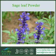 Sage leaf Powder (GMO Free & No-Irradiated from Source )