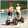 Cheap Electric Moped Scooter Transport Scooter AC100-240V