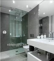 Tempered glass stainless steel sliding shower door