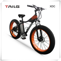 direct factory EN15194 pedel electric bike with battery power giant bike for snow, warranty electric bike XDC