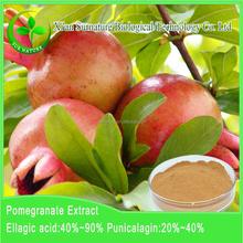 High quality pomegranate bark extract powder/pomegranate peel extract