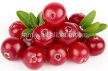 100% Natural Cranberry Fruit Extract Anthocyanidins/proanthocyanidins5% 10% 25% Vaccinium Macrocarpon Extract