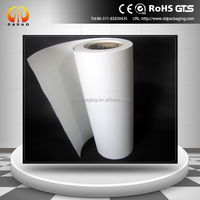PET Material and Insulation Film Type White mylar