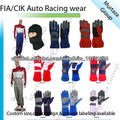 Motorsports Gloves, Auto Race Wear, Go Kart, Kart Racing, Karting, Racing Suits, Gloves, Body & Neck Protection, Balaclava