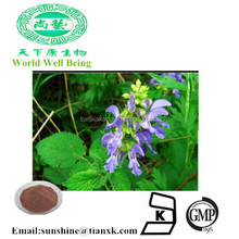 Radix Salviae Miltiorrhizae Tanshinone / Red Salvia Extract Cryptotanshinone / Red sage Extract Salvianolic Acid B