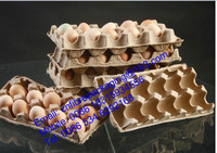 molded inner packaging paper pulp egg tray plant