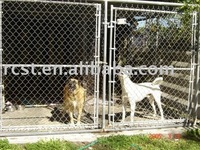 heavy duty metal steel pet dog cage crate kennel