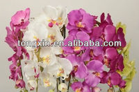 orchid phalaenopsis artificial 27538