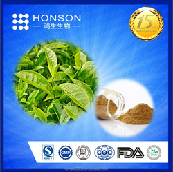 best selling GMP+QS+ISO manufacture for 100% natural green tea extract egcg powder of health material