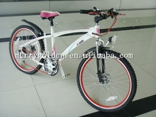 High performance electric bike racing bike with double suspension