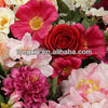 /p-detail/Flores-artificiales-coloridas-300005457303.html