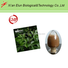 Holy blackberry extract powder, Chasteberry extract as the medicine raw material