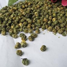 young chrysanthemum flowers chinese herbal medicine materia medica