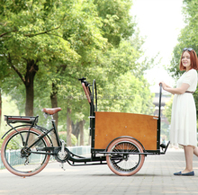 dutch style 3 wheel electric cargo bicycle/mother and baby bike