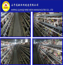 china (mainland) manufacture chicken cages anping (full poultry equipment and own oversea agent)