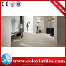 Azulejo branco porcelana feita pisos e azulejos do banheiro norte e azulejos