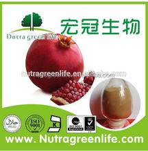 GMP Manufacture Pomegranate Ellagic Acid/Polyphenols/ Punicalagin Pomegranate Peel Extract