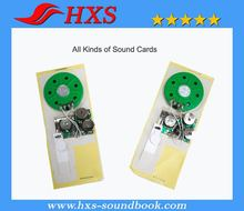 Greeting Card Programmable Voice Recorder Sound Module