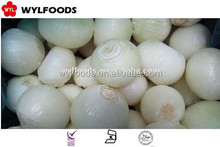Chinese Frozen onion ball good quality best price