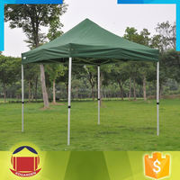 Cheap Wedding Marquee Party Tent With Curtain