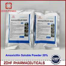 Highly effective GMP factory 20% Amoxicillin and Colistin Sulfate powder for veterinary medicines and drugs farming Poultry use