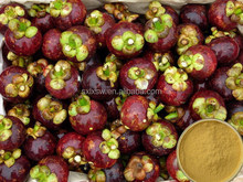 Highly concentrated 100% hotsell bulk mangosteen extract powder