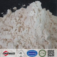 Best Price Isolated Soya Protein For Meat Porcessing