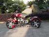 EEC Approved 300cc three wheel atv AT3001