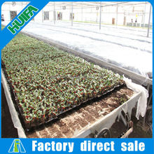 High Quality Greenhouse for Seeding On Sale