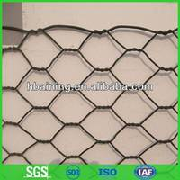 Lowest price chicken wire mesh for sale(more than 20 years factory)