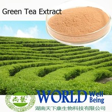 Hot sales plant extract Great tea extract/Catechin 98%/Prevent Cardiovascular disease Free sample