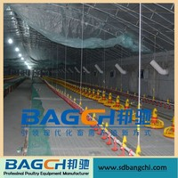 Modern Big Discount Automatic Farming Poultry for Chicken House