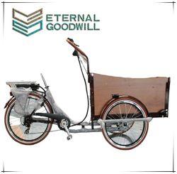 CE 3 wheels 6 speeds electric cargo bike for adult with motor cargobike bike electric model UB9032E