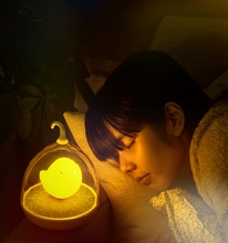 Fascinating Birdcage Design Touch Sensor USB Rechargable Baby Night Lamp for Night Activity