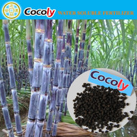 eco-friendly NPK and molasses fermentation sugarcane fertilizer